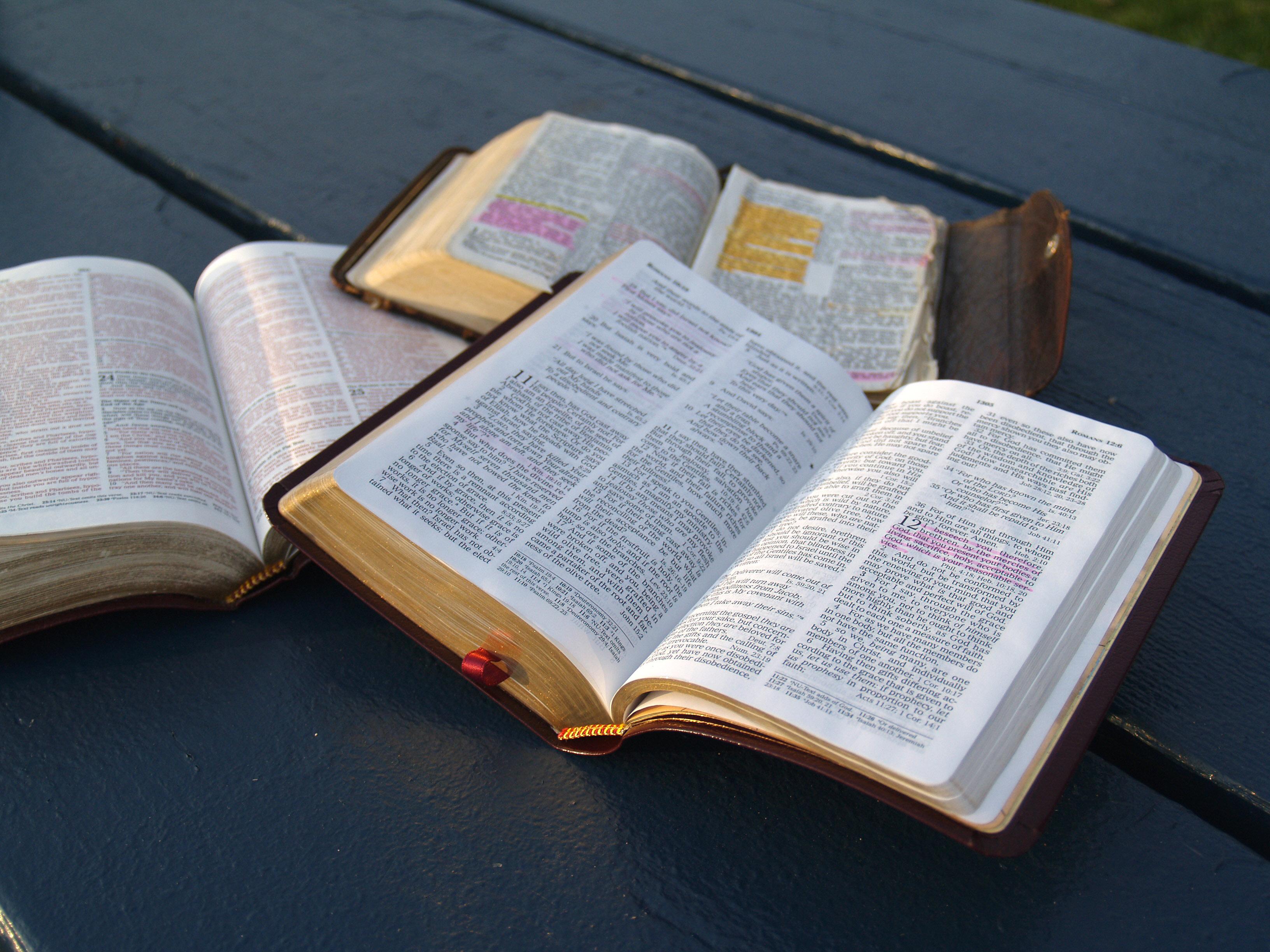 bible-study-1312533