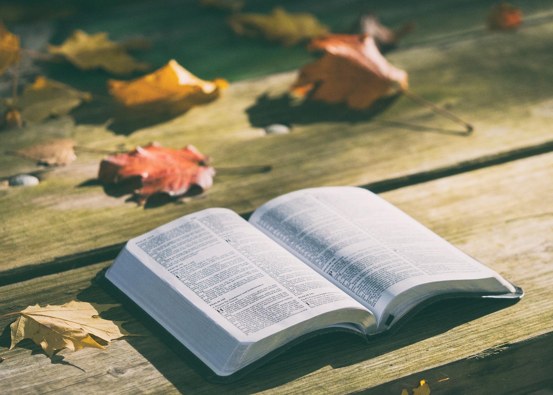 LA BIBLE ET SES EXTRAITS DÉSORMAIS DISPONIBLES EN 3324 LANGUES !